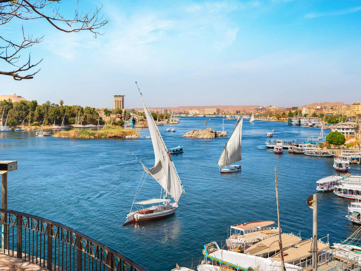 much-travels-aswan-02